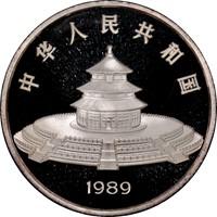 1989 12oz  S100Y Silver Panda Coin Rev