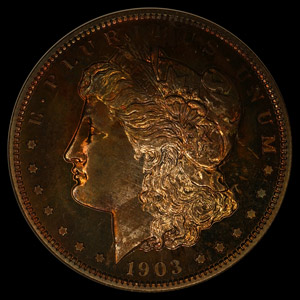 BRS Legacy Collection of Morgan Dollars