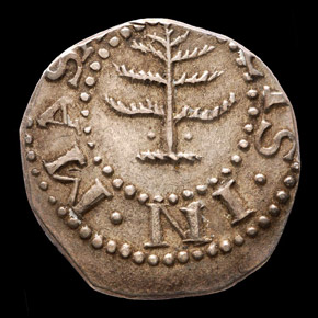 1652 PELLETS PINE TREE MASSACHUSETTS 6P MS obverse
