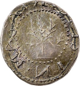 1652 'IN'OBV OAK TREE MASSACHUSETTS 6P MS obverse